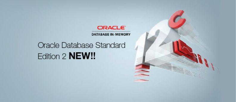 Conheça o Oracle Standard Edition 2